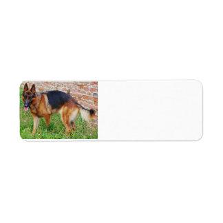 german-shepherd-black and red full return address label
