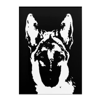 German Shepherd Black & White Acrylic Wall Art
