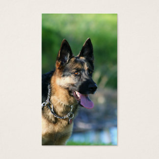 German Shepherd business cards