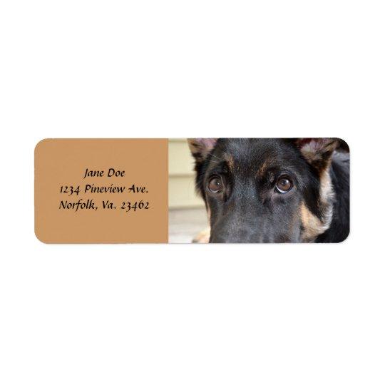 German Shepherd by Shirley Taylor Return Address Label