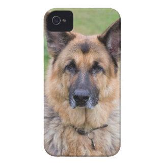 German Shepherd dog beautiful Blackberry Bold case