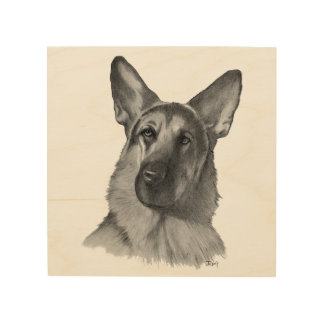 German Shepherd Dog Drawing Wood Canvases