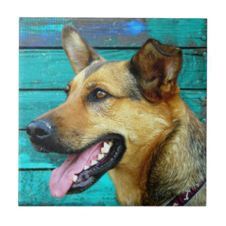 German Shepherd Dog Face Ceramic Tile