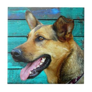German Shepherd Dog Face Small Square Tile