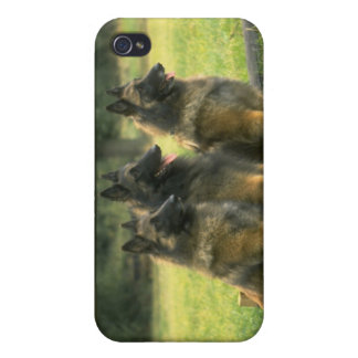 German Shepherd  Dogs Covers For iPhone 4