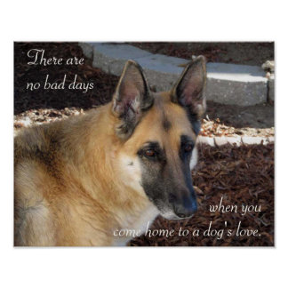 German Shepherd Dog's Love Poster