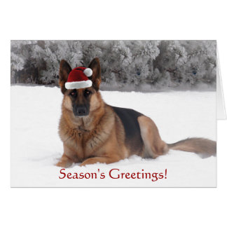 German Shepherd Holiday Greeting Card