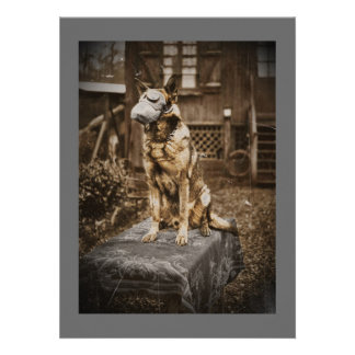 German Shepherd in Gas Mask Personalized Announcement