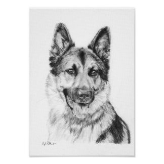 German Shepherd in Graphite Print