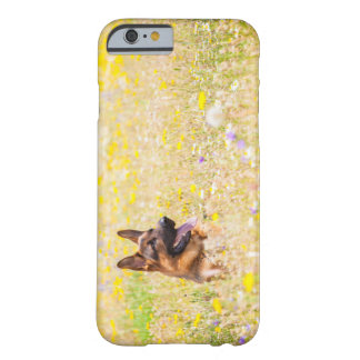 German shepherd in Spring flowers Barely There iPhone 6 Case
