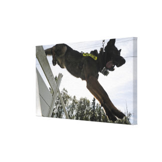 German Shepherd Police Dog Canvas Print
