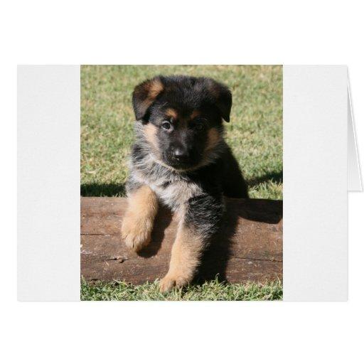 "German Shepherd Puppy ""Big Max"" Card"