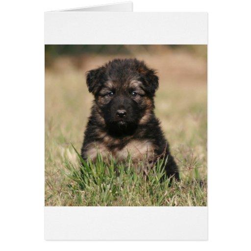 """German Shepherd Puppy """"Reef"""" Card"""