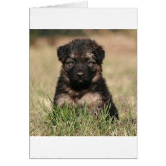 """German Shepherd Puppy """"Reef"""" Greeting Card"""