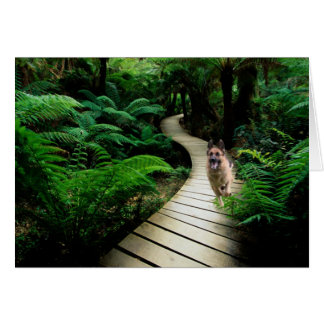 German Shepherd Rain Forest Card