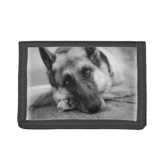 German Shepherd Trifold Wallet