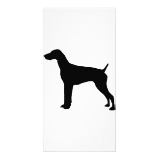 German Short-haired Pointer dog Silhouette Customised Photo Card