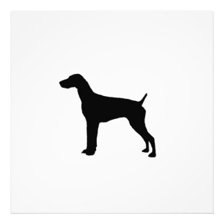 German Short-haired Pointer dog Silhouette Photographic Print