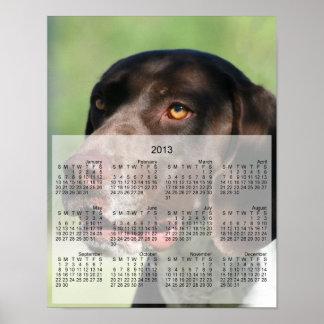 German Shorthaired pointer dog 2013 calendar print