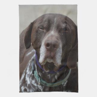 German Shorthaired Pointer Dog Tea Towel