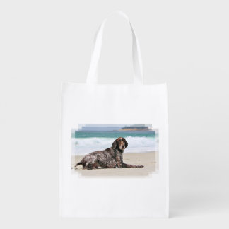 German Shorthaired Pointer - Luke - Riley