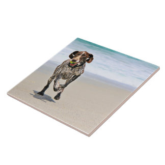German Shorthaired Pointer - Luke - Riley Tile