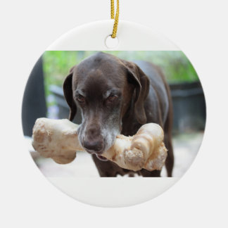 german shorthaired pointer with bone ceramic ornament