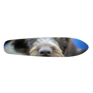 German Wire Haired Pointer Skateboard Deck