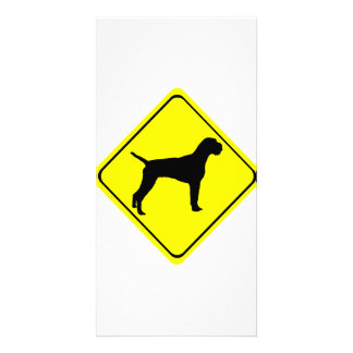 German Wired-Haired Pointer Dog Crossing Sign Photo Greeting Card