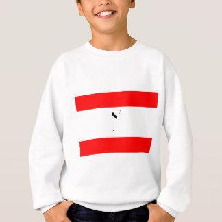 Germany-Berlin Flag Sweatshirt