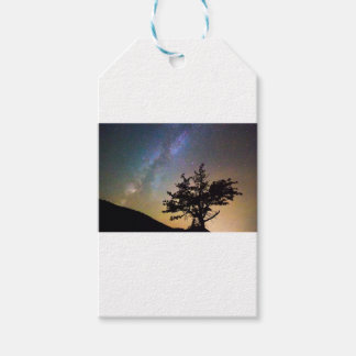 Get Lost In Space Gift Tags