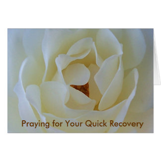 Get Well Card, White Rose Card