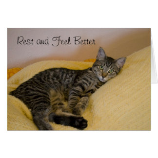 Get Well Cat Card 2