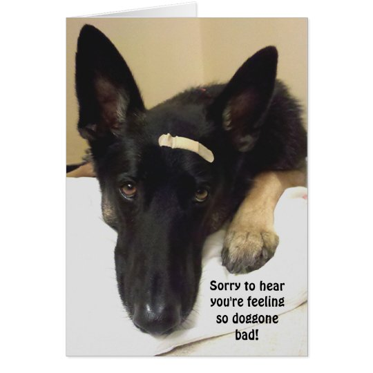 Get Well - Feeling So Doggone Bad Card