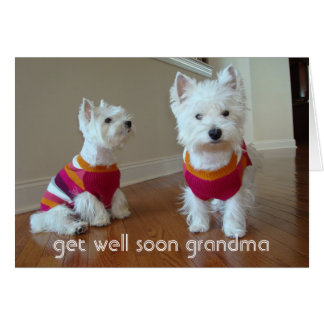 Get Well Grandma Stationery Note Card