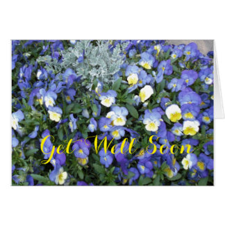Get Well Greeting Card-Pansies Note Card