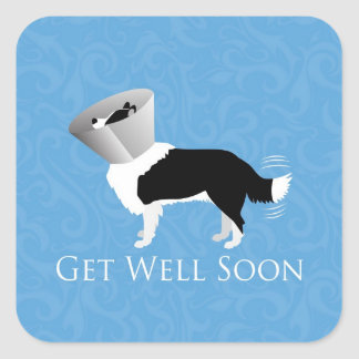 Get Well Soon - Border Collie Male Square Sticker