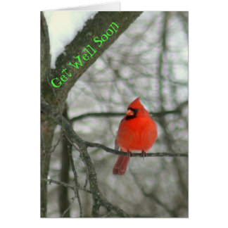 """""""GET WELL SOON""""/BRIGHT RED CARDINAL ON TREE BRANCH CARD"""