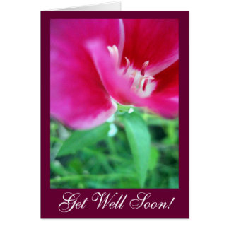 Get Well Soon! Greeting Cards