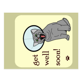 Get Well Soon | Cat with Cone Postcard