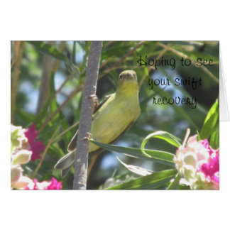 Get Well Soon Lesser Goldfinch Card