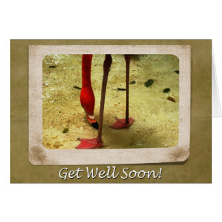 Get Well Soon Pink Flamingo Greeting Card