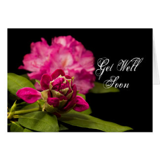 GET WELL SOON - RHODODENDRONS on Black Card