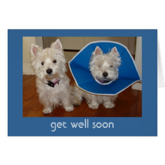 Get Well Soon Stationery Note Card