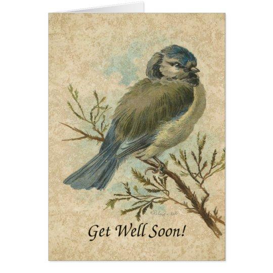 Get Well Soon, Vintage Bluetit Bird Greeting Card