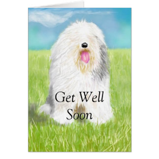 Get Well Soon with Sheep Dog Greeting Card