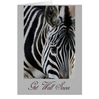 Get Well Soon - Zebra - Animal Greeting Card