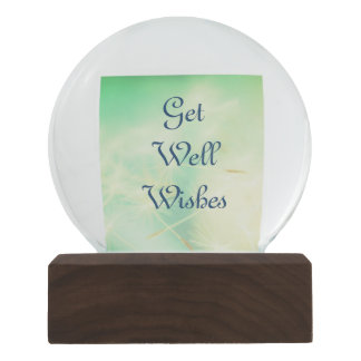 Get Well Wishes Snow Globes