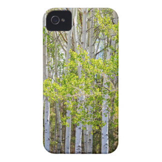Getting Lost In the Wilderness iPhone 4 Case-Mate Cases