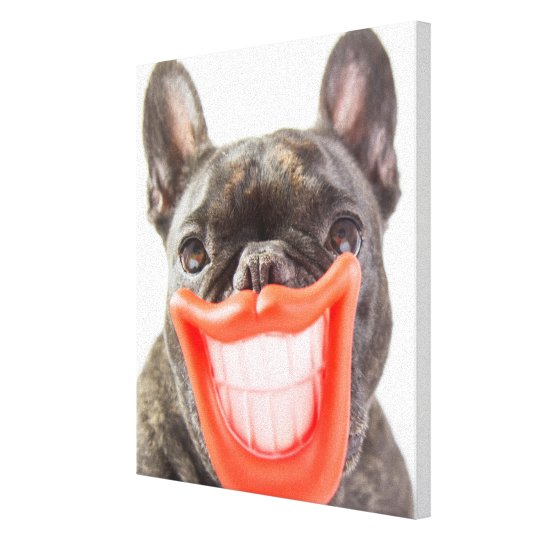 Getty Images | A Smiling Dog Canvas Print